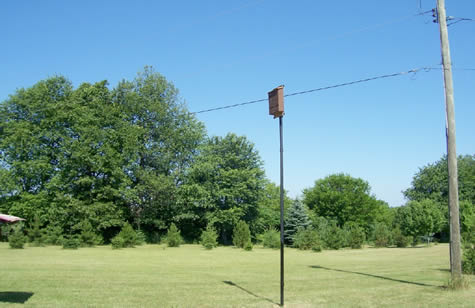 3 chamber bat house stained brown on a pole