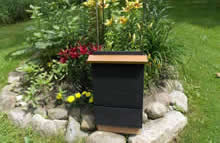 2 cell bat house painted black with penny bright roof